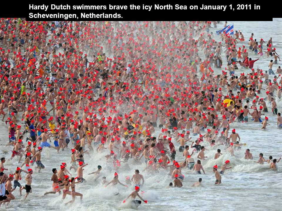 Hardy Dutch swimmers brave the icy North Sea on January 1, 2011 in Scheveningen, Netherlands.
