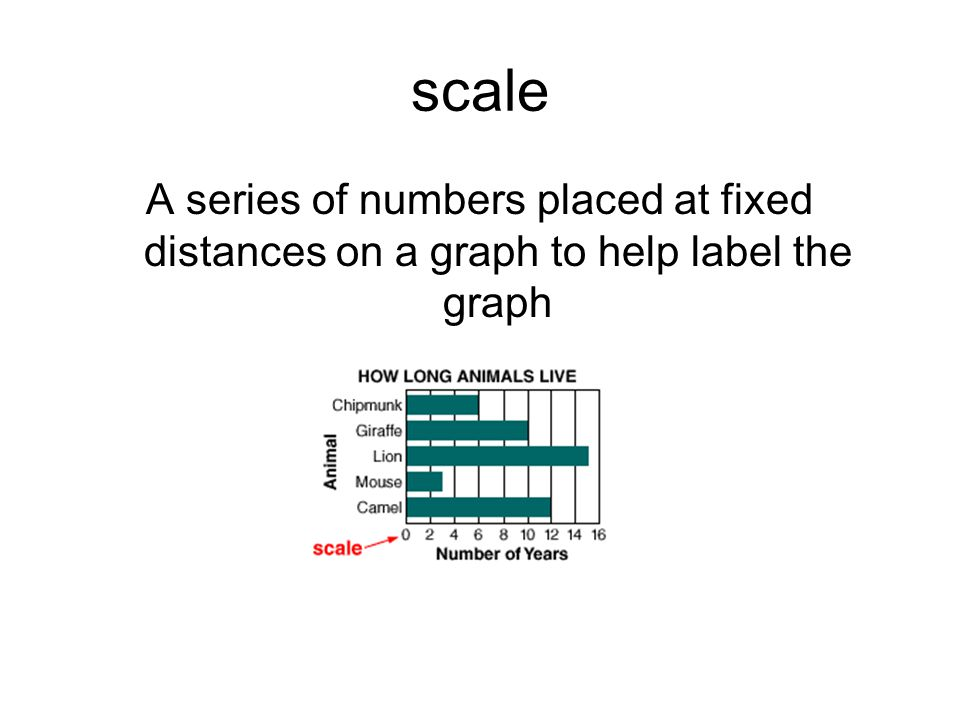 scale A series of numbers placed at fixed distances on a graph to help label the graph