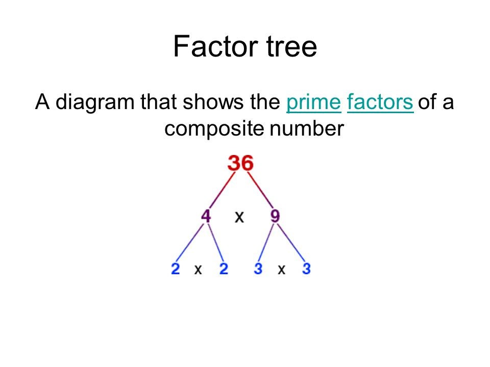 A diagram that shows the prime factors of a composite number