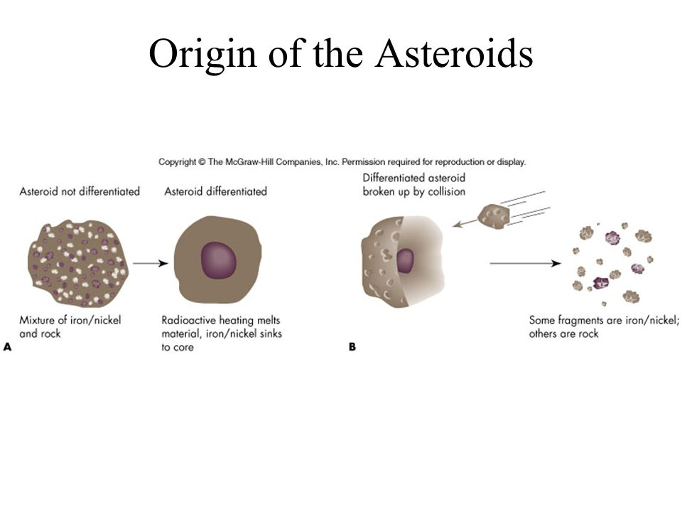 Origin of the Asteroids