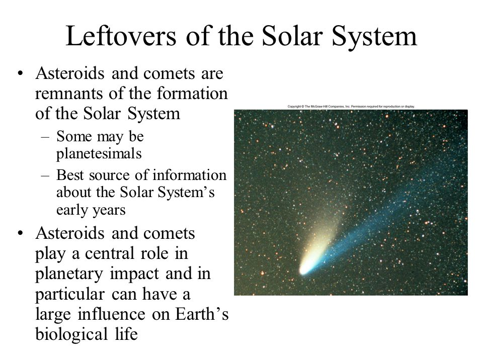 Leftovers of the Solar System