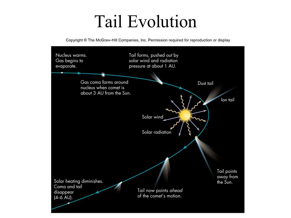 Tail Evolution
