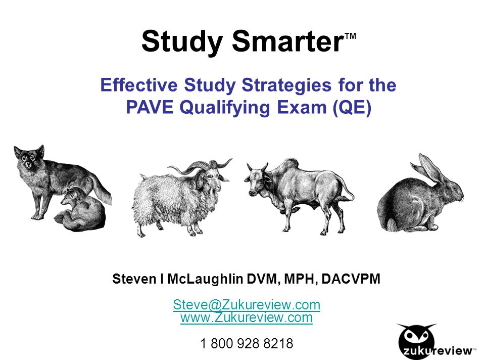 Study SmarterTM Effective Study Strategies for the PAVE Qualifying Exam (QE)
