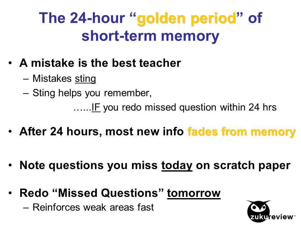 The 24-hour golden period of short-term memory