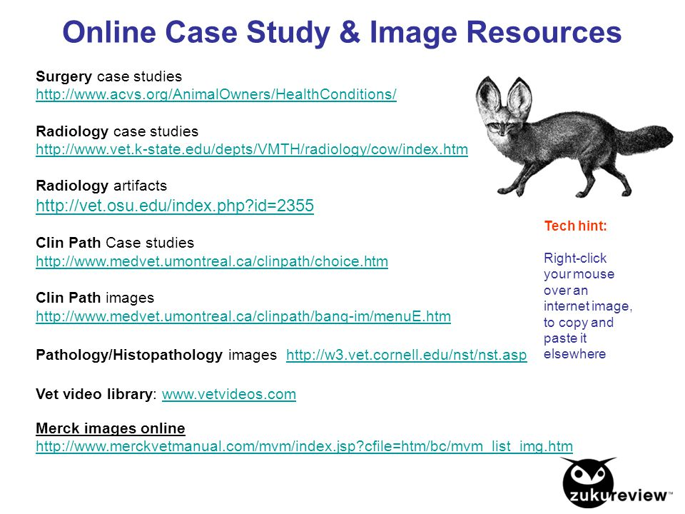 Online Case Study & Image Resources