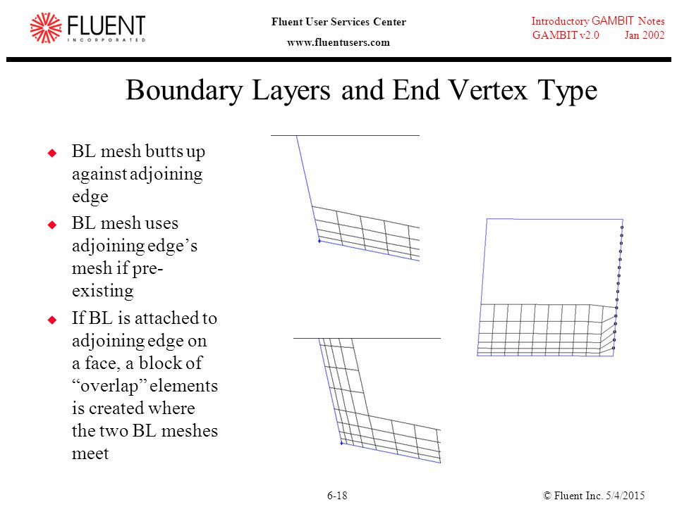 Boundary Layers and End Vertex Type