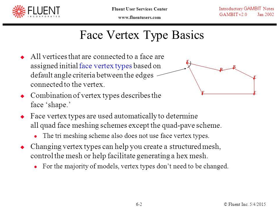 Face Vertex Type Basics