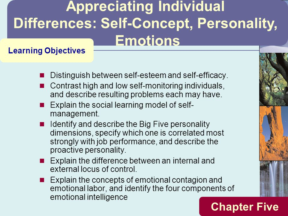 Appreciating Individual Differences: Self-Concept, Personality,