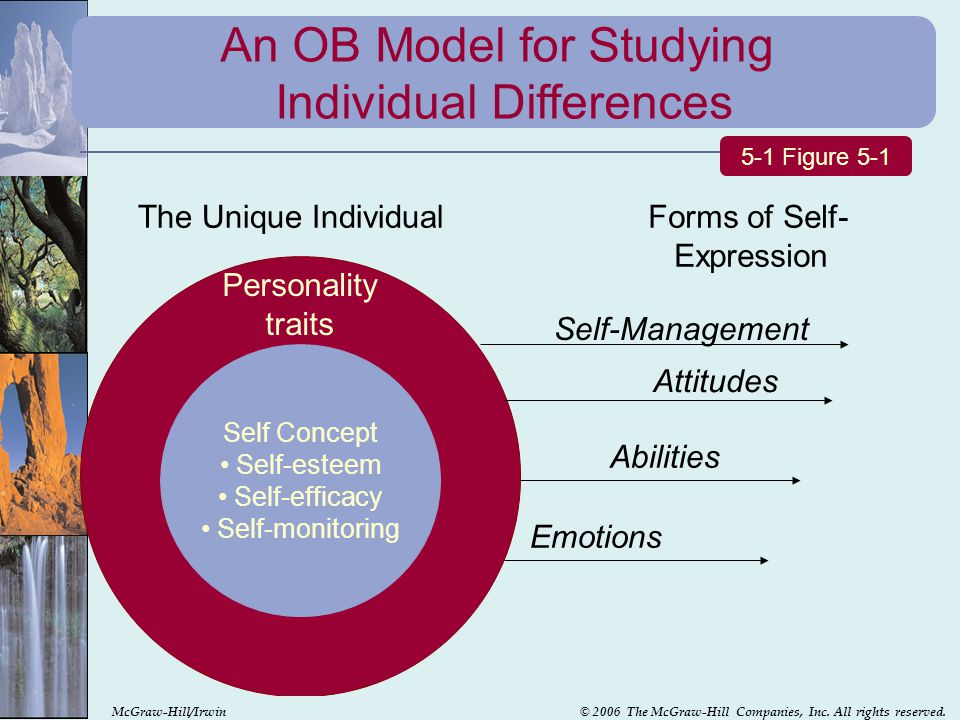 An OB Model for Studying Individual Differences