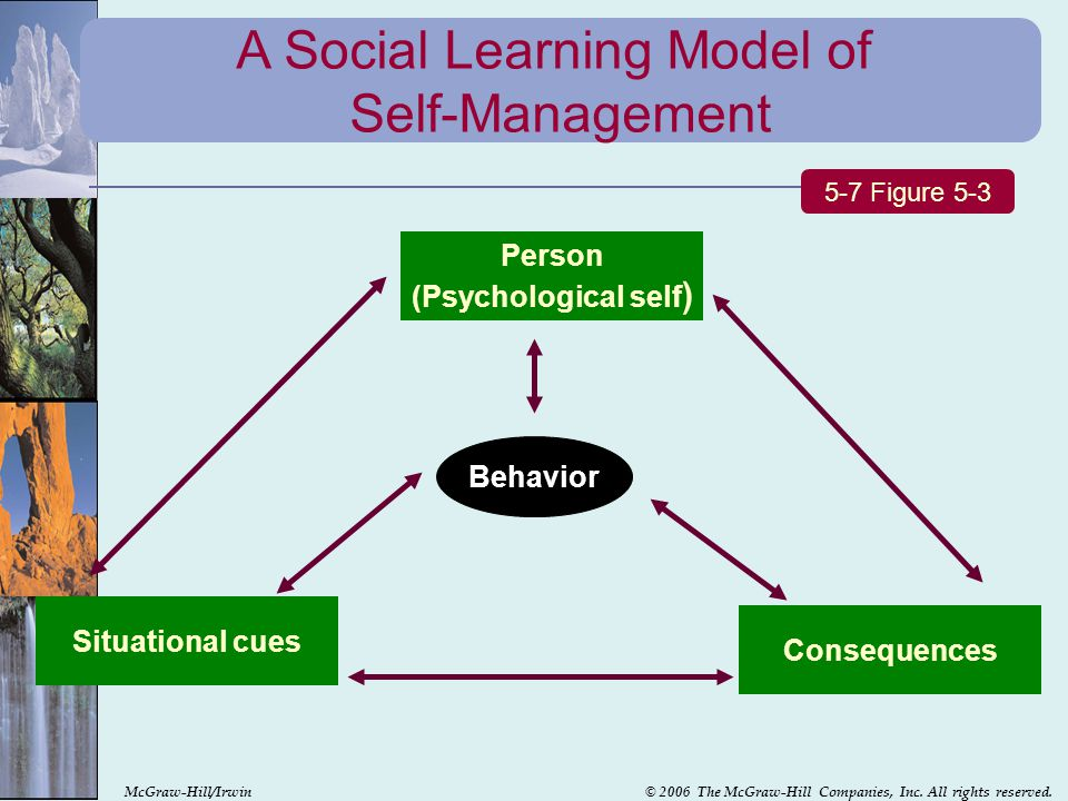 A Social Learning Model of