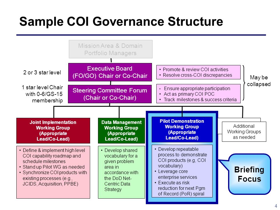 Sample COI Governance Structure