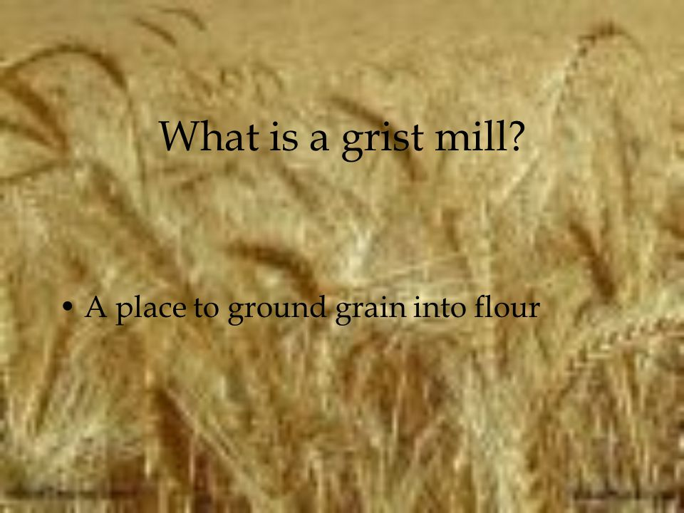 What is a grist mill A place to ground grain into flour