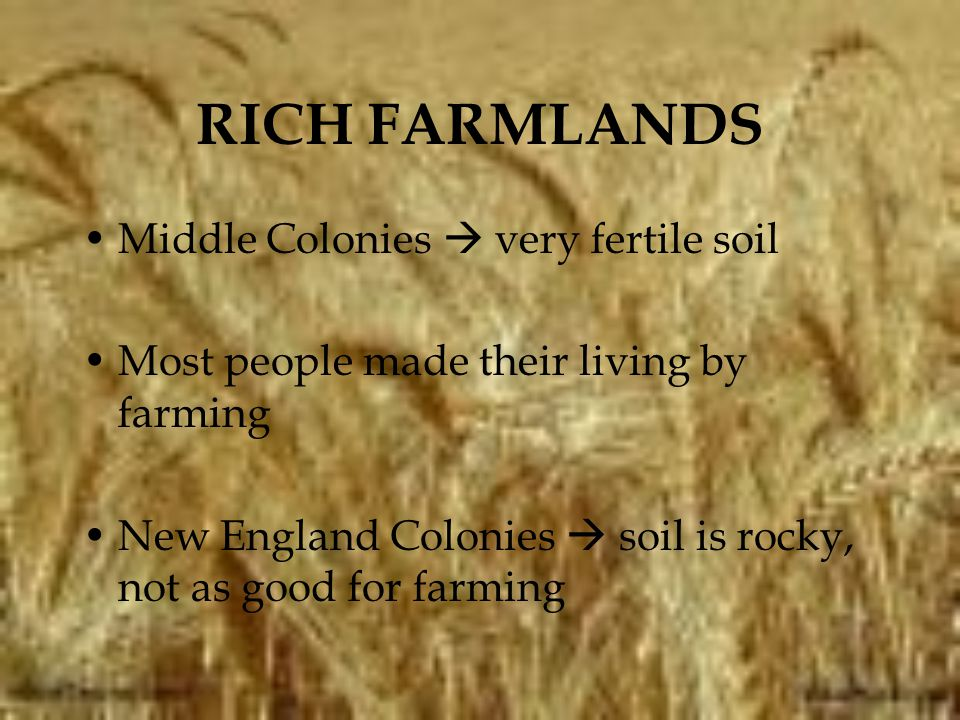 RICH FARMLANDS Middle Colonies  very fertile soil