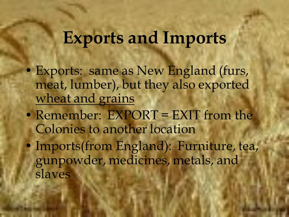 Exports and Imports Exports: same as New England (furs, meat, lumber), but they also exported wheat and grains.
