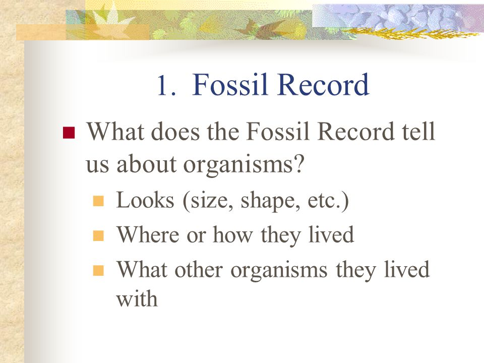 1. Fossil Record What does the Fossil Record tell us about organisms