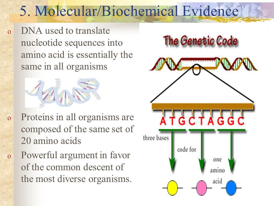 5. Molecular/Biochemical Evidence
