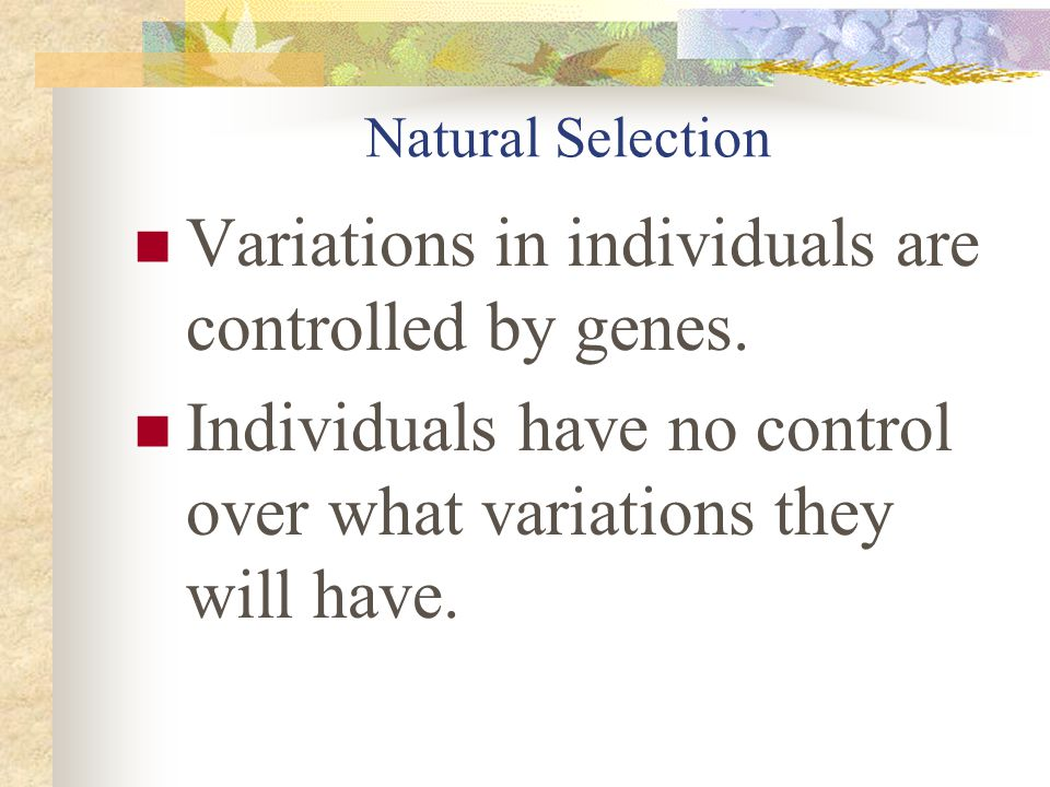 Variations in individuals are controlled by genes.