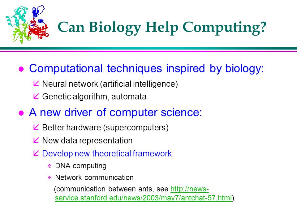 Can Biology Help Computing