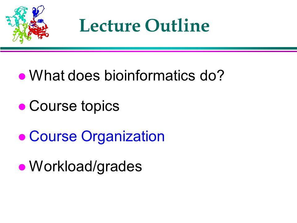 Lecture Outline What does bioinformatics do Course topics