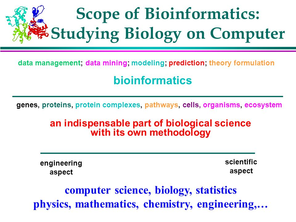 Scope of Bioinformatics: Studying Biology on Computer