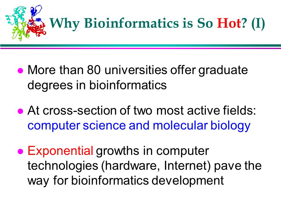 Why Bioinformatics is So Hot (I)