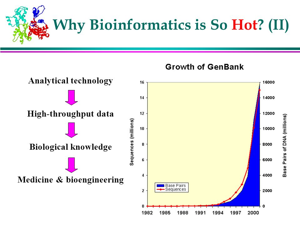 Why Bioinformatics is So Hot (II)