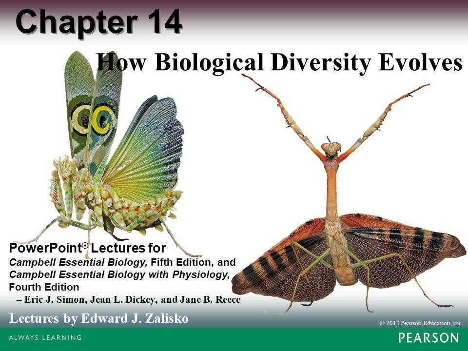 How Biological Diversity Evolves