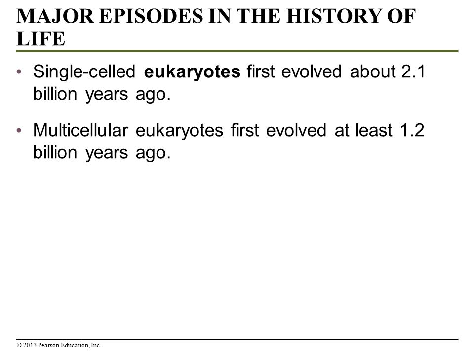 MAJOR EPISODES IN THE HISTORY OF LIFE