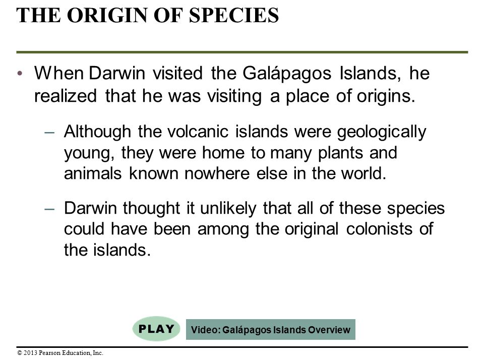 Video: Galápagos Islands Overview