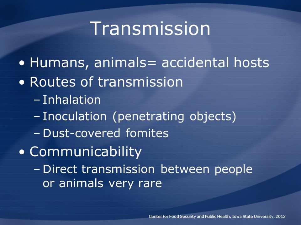 Transmission Humans, animals= accidental hosts Routes of transmission