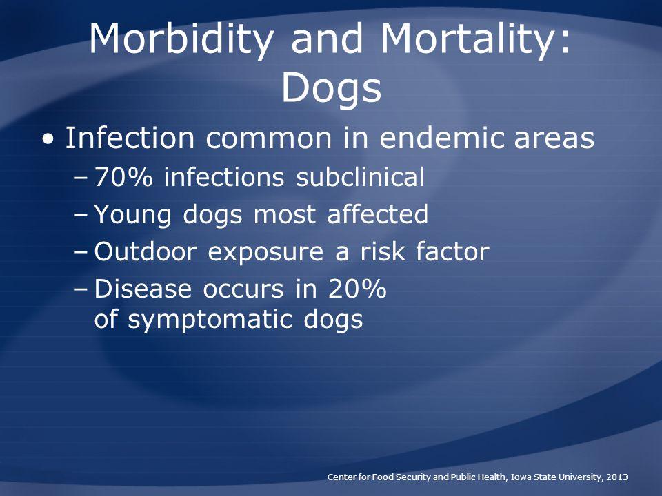 Morbidity and Mortality: Dogs