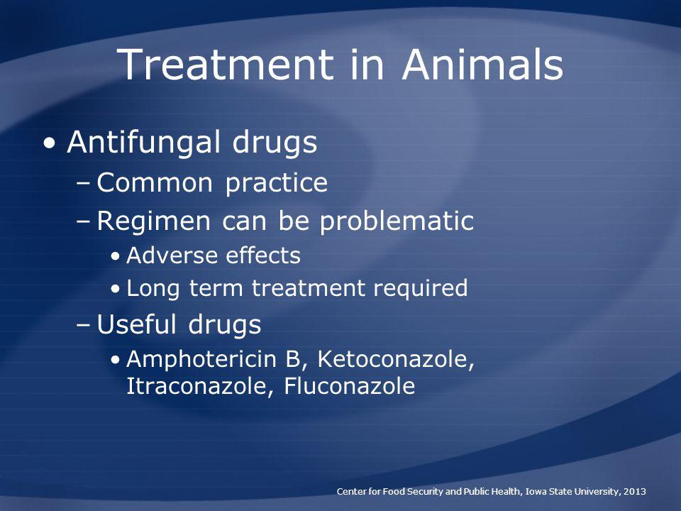 Treatment in Animals Antifungal drugs Common practice