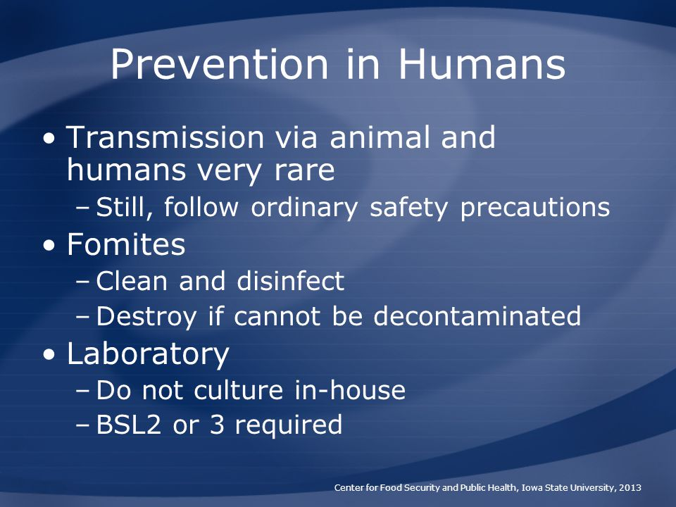 Prevention in Humans Transmission via animal and humans very rare