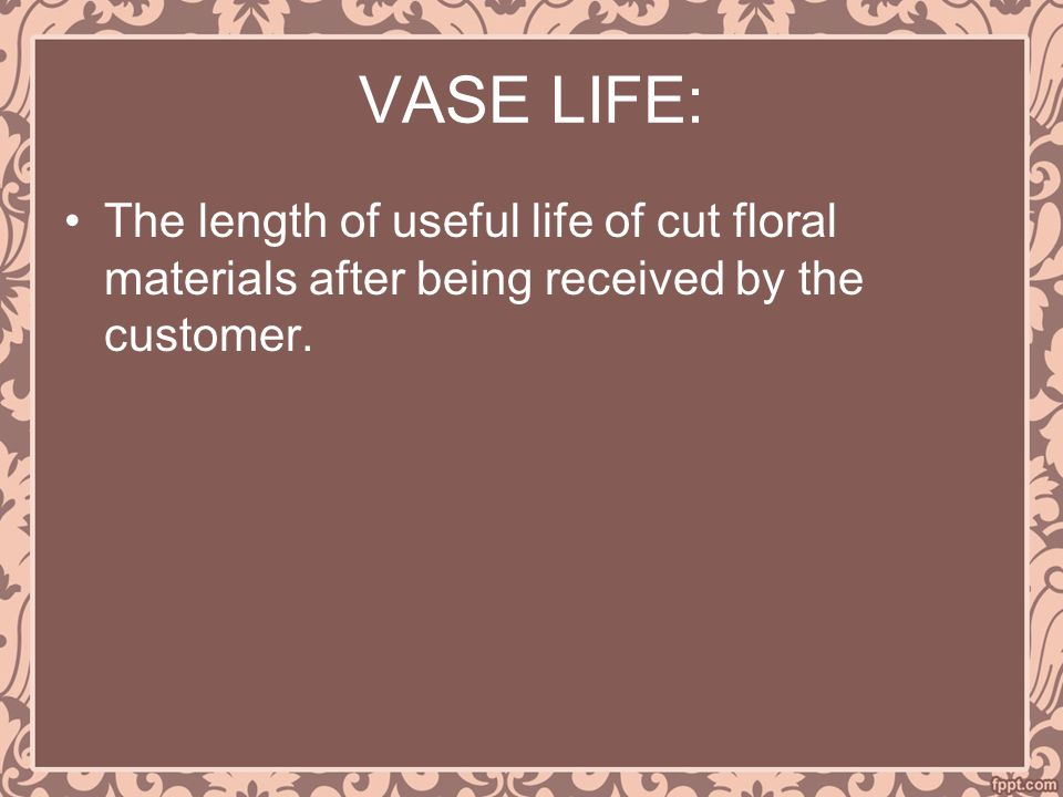 VASE LIFE: The length of useful life of cut floral materials after being received by the customer.