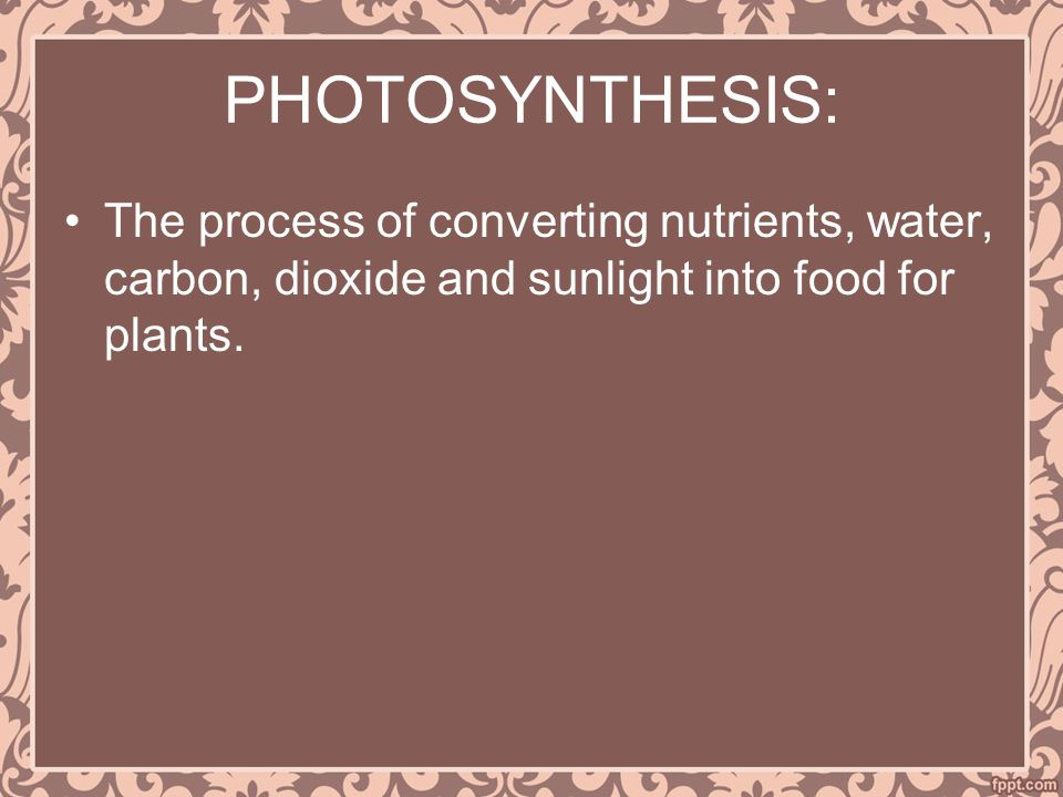 PHOTOSYNTHESIS: The process of converting nutrients, water, carbon, dioxide and sunlight into food for plants.