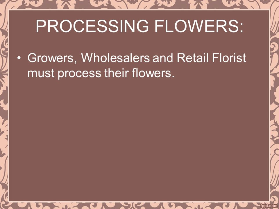 PROCESSING FLOWERS: Growers, Wholesalers and Retail Florist must process their flowers.
