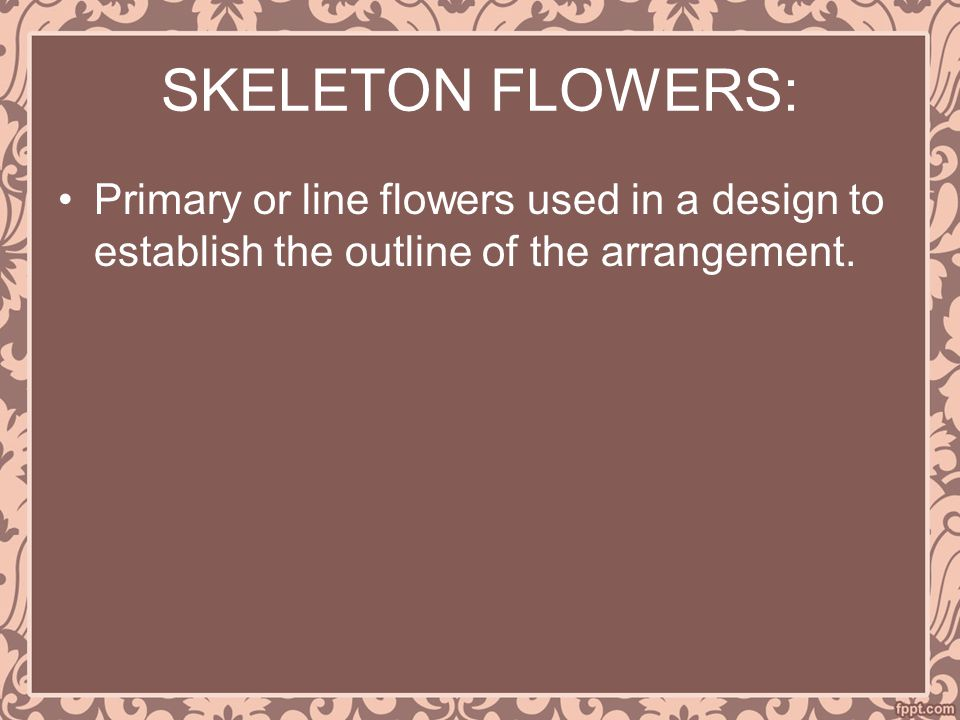 SKELETON FLOWERS: Primary or line flowers used in a design to establish the outline of the arrangement.