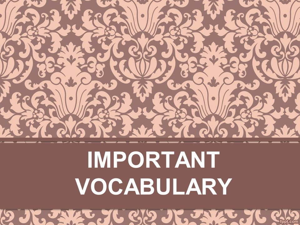 Important Vocabulary