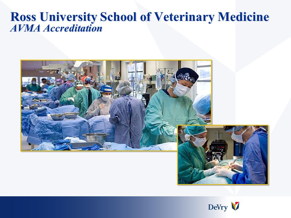 Ross University School of Veterinary Medicine AVMA Accreditation