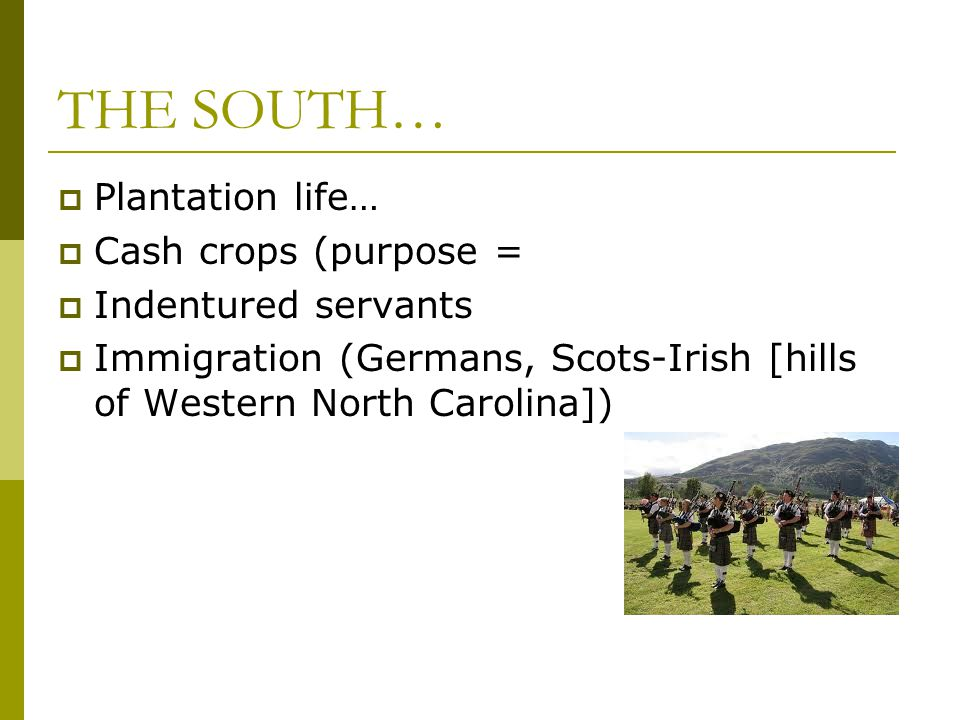 THE SOUTH… Plantation life… Cash crops (purpose = Indentured servants