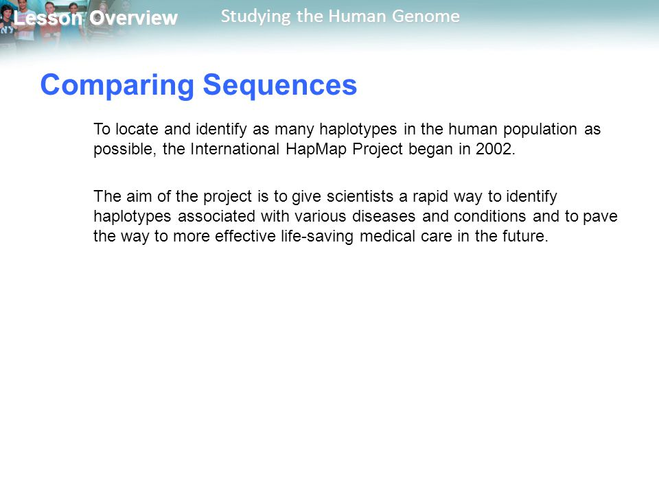 Comparing Sequences To locate and identify as many haplotypes in the human population as possible, the International HapMap Project began in 2002.