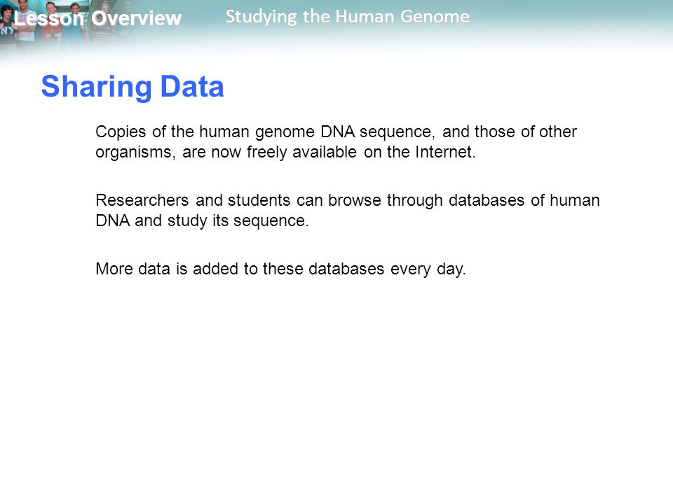 Sharing Data Copies of the human genome DNA sequence, and those of other organisms, are now freely available on the Internet.