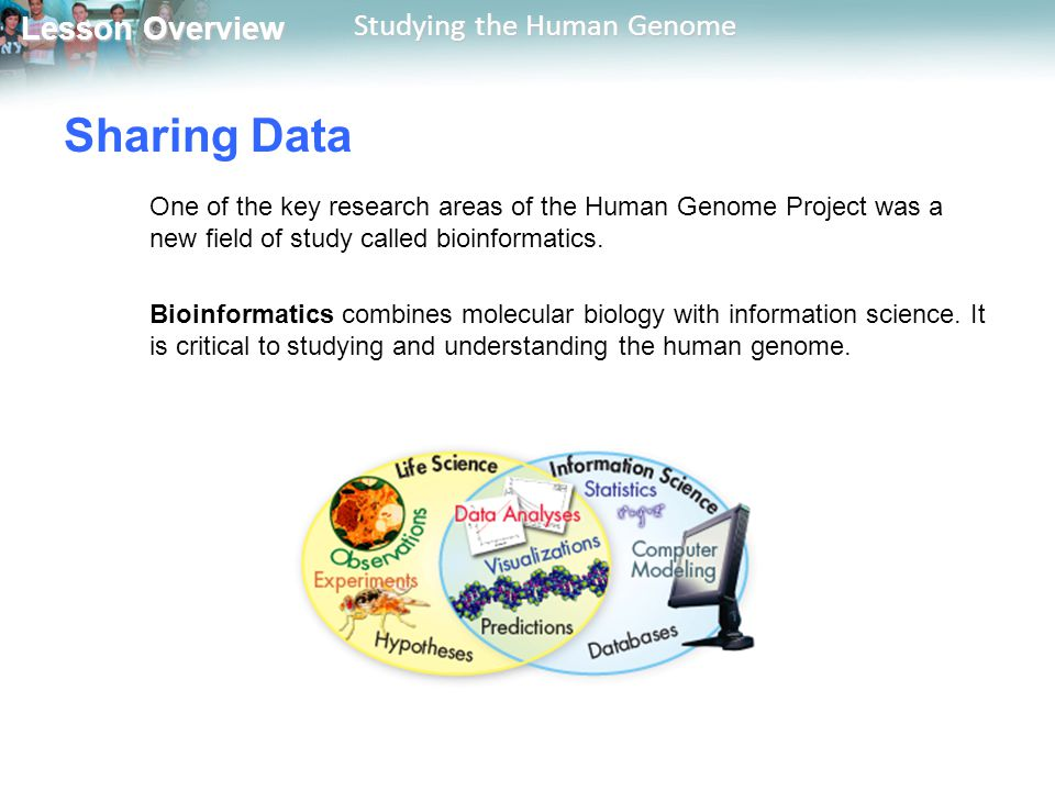 Sharing Data One of the key research areas of the Human Genome Project was a new field of study called bioinformatics.