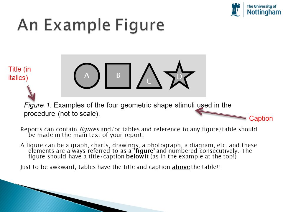 An Example Figure Title (in italics) A B C D