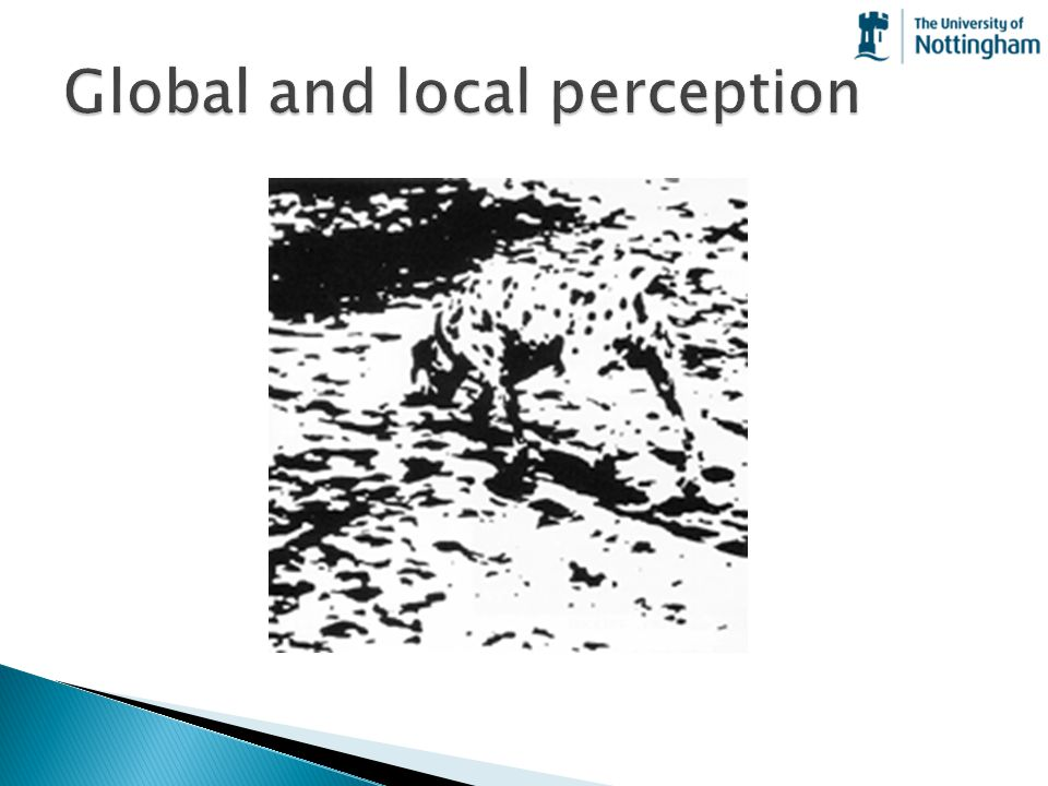 Global and local perception