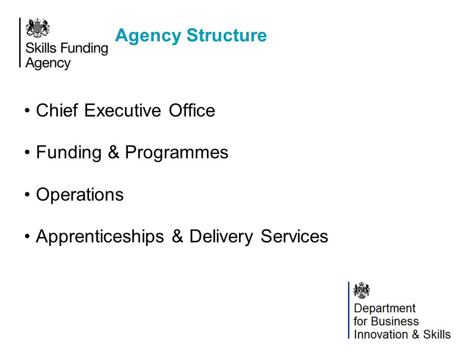 Agency Structure Chief Executive Office. Funding & Programmes.