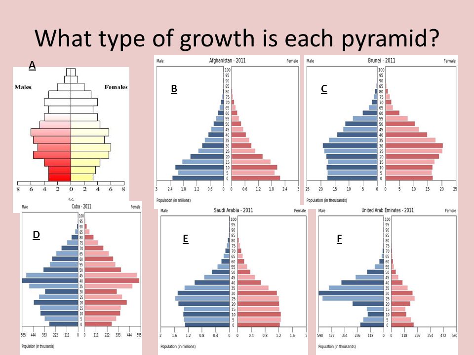 What type of growth is each pyramid