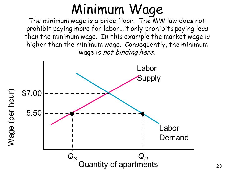 Minimum Wage The minimum wage is a price floor