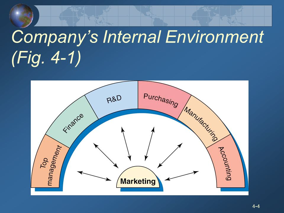 Company's Internal Environment (Fig. 4-1)
