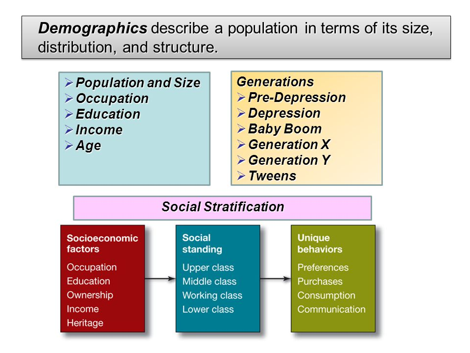 demographics and social stratification Occupational gender segregation, social stratification and pay differences  are on the top in terms of stratification with all of the ensuing social ramifications .